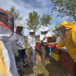 Kolping omladinska škola pčelarstva